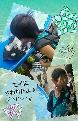 20130807_104256-1.jpg